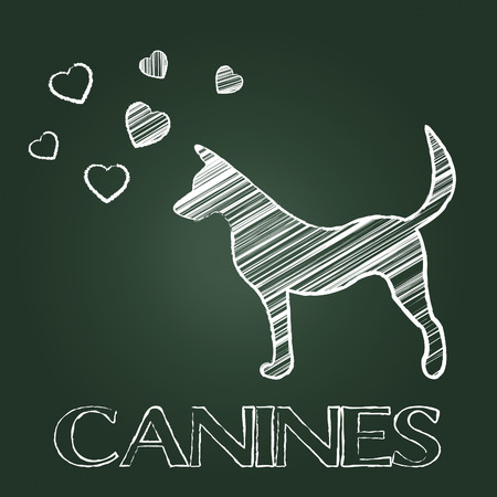 canines: Canines Word Representing Purebred Dog And Puppy