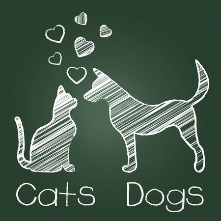 Cats Dogs Love Indicating Pup Fondness And Feline