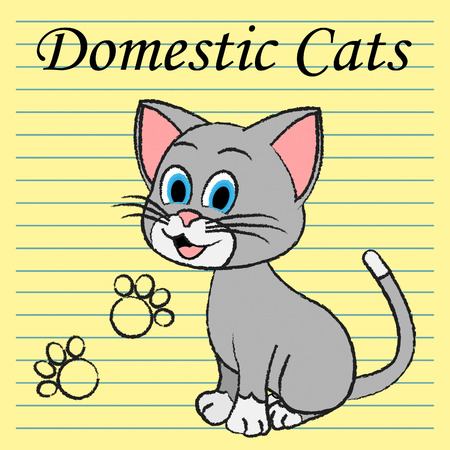 puss: Domestic Cats Representing Family Puss And Feline