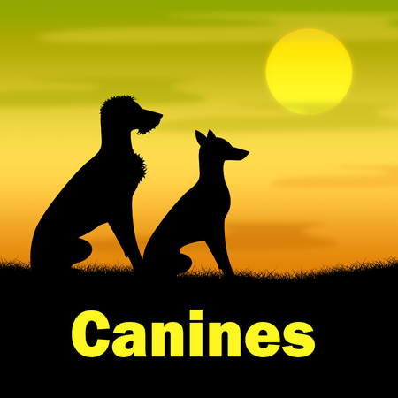 canines: Canines Word Showing Landscape Grass And Grassland Stock Photo