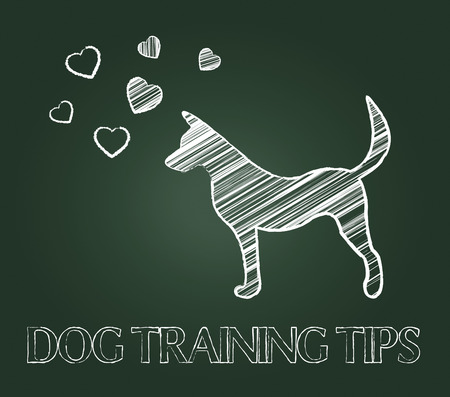 Dog Training Tips Indicating Trained Pets And Doggy