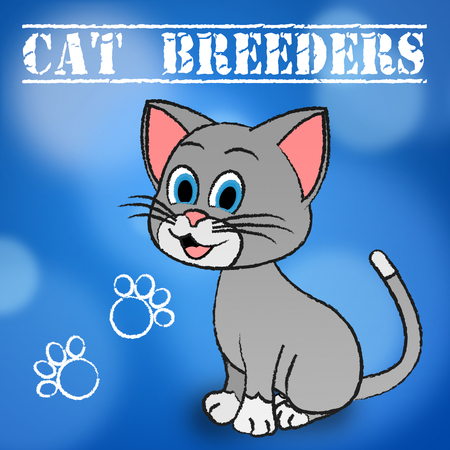 breeders: Cat Breeders Meaning Breeds Kitten And Reproducing