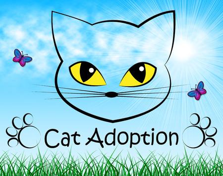 guardianship: Cat Adoption Meaning Pedigree Adopting And Feline