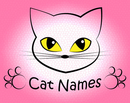felines: Cat Names Showing Pet Felines And Kitty Stock Photo