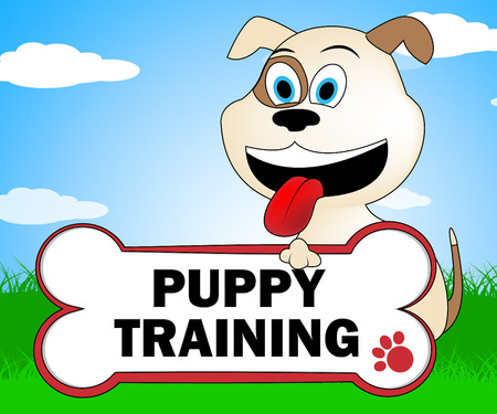canines: Puppy Training Meaning Pets Canines And Dogs Stock Photo
