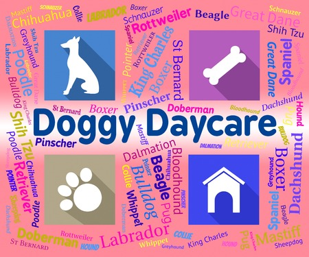 pups: Doggy Daycare Representing Pets Pups And Purebred Stock Photo