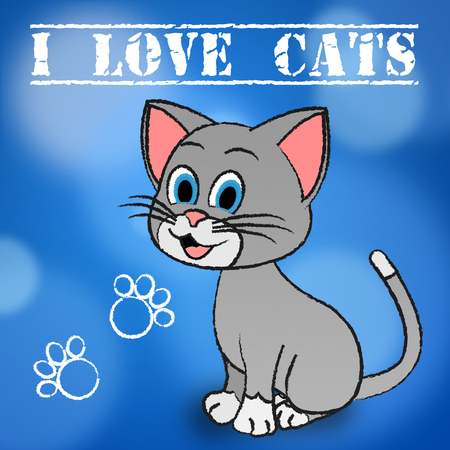 felines: Love Cats Meaning Pets Loving And Felines