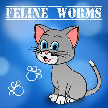 gusanos: Los gusanos felino Significado Gato doméstico y animales de compañía Foto de archivo