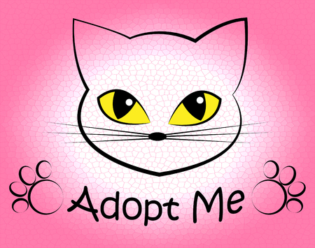 adopting: Cat Adoption Meaning Pets Puss And Adopting