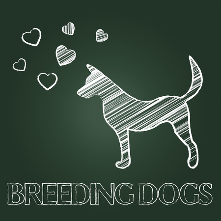 reproduce: Breeding Dogs Showing Canine Bred And Doggy