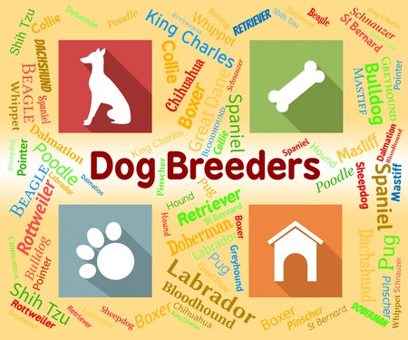Dog Breeders Meaning Purebred Mate And Pups