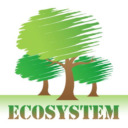ecosistema: Ecosystem Trees Representing Treetops Woods And Ecology Foto de archivo