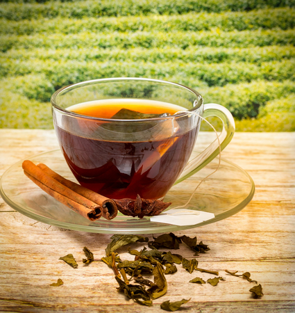 tea breaks: Tea With Cinnamon Meaning Refreshing Cafe And Spices Stock Photo