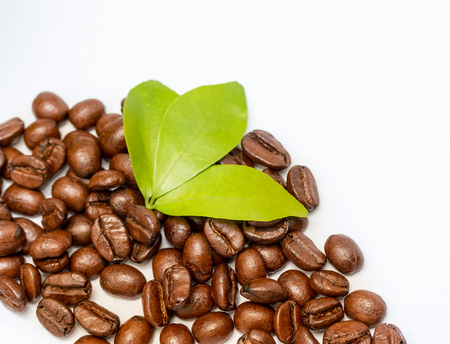 hot coffees: Roasted Coffee Beans Meaning Caffeine Tasty And Brew Stock Photo