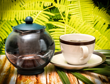 refreshes: Outdoor Green Tea Meaning Beverages Fresh And Refreshed Stock Photo