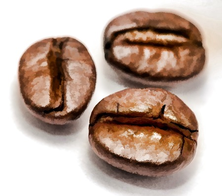 hot coffees: Coffee Beans Showing Close Up And Roasted Stock Photo