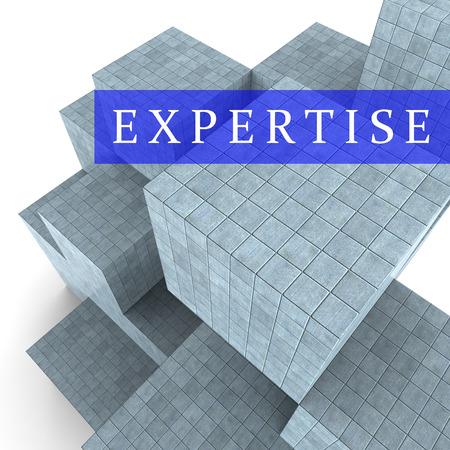 master: Expertise Blocks Representing Master Skills 3d Rendering