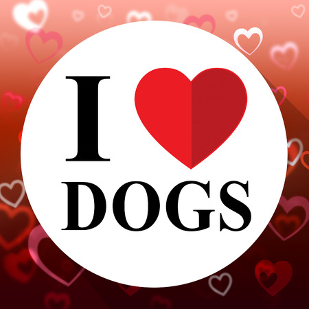 delightful: Love Dogs Heart Indicates Fabulous Delightful Superb Pets
