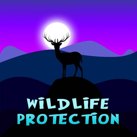 wildlife conservation: Wildlife Protection Mountain Scene Shows Animal Conservation 3d Illustration