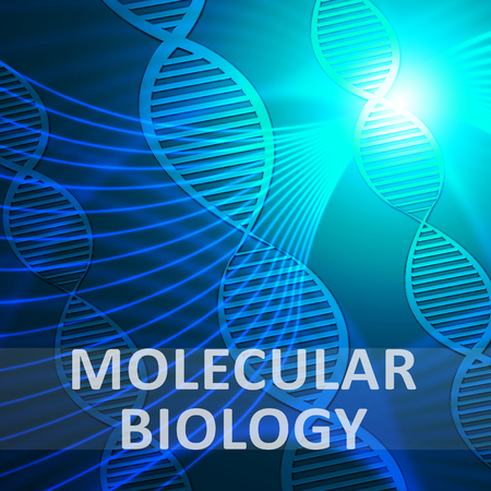 molecular biology: Molecular Biology Helix Meaning Dna Research 3d Illustration Stock Photo