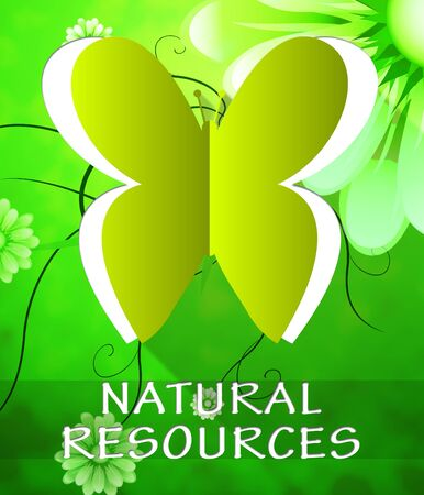 Natural Resources Butterfly Cutout Shows Nature Assets 3d Illustration