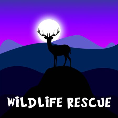 Wildlife Rescue Mountain Scene Shows Preserve Animals 3d Illustration Stock fotó