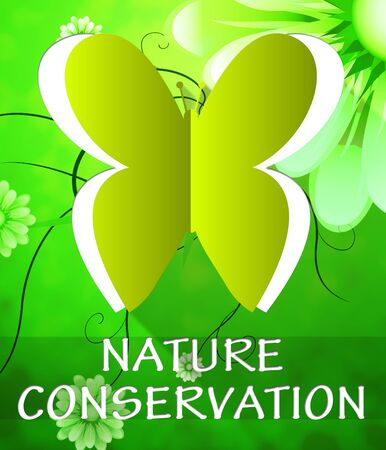 Nature Conservation Butterfly Cutout Shows Preservation 3d Illustration Stock fotó - 68829975