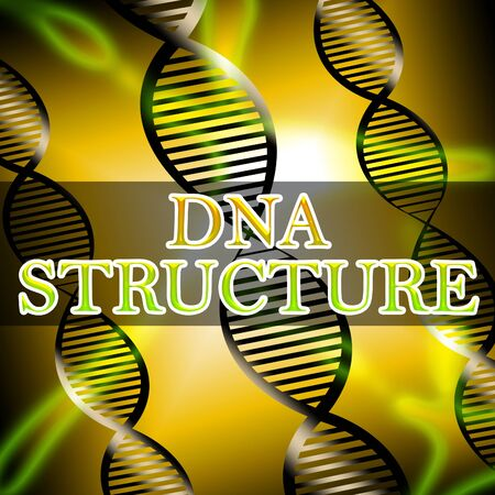 Dna Structure Helix Shows Biotech Structures 3d Illustration Stock Photo