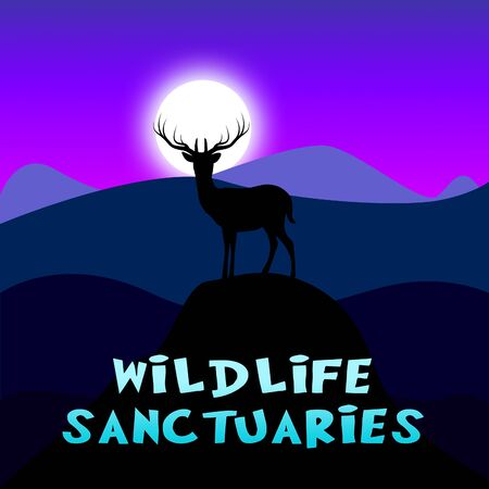 wildlife Sanctuaries Mountain Scene Shows Animal Reservation 3d Illustration Stock fotó