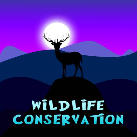 Wildlife Conservation Mountain Scene Showing Animal Preservation 3d Illustration