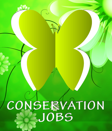 Conservation Jobs Butterfly Cutout Shows Preservation 3d Illustration Stock Photo