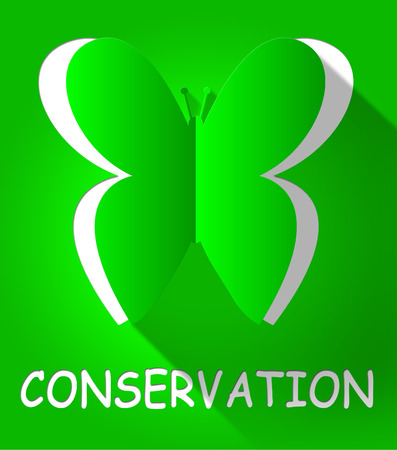 Conservation Butterfly Cutout Shows Natural Preservation 3d Illustration