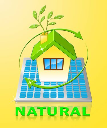 Natural House Displays Organic Healthy And Pure 3d Illustration