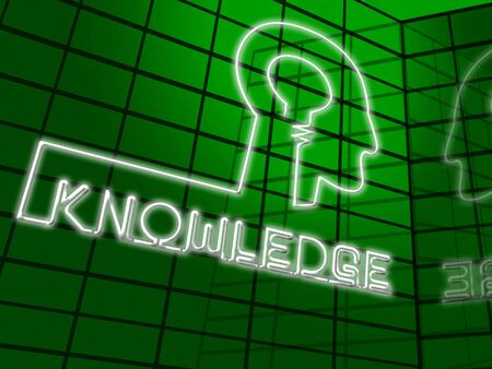 Knowledge Brain Showing Know How And Wisdom 3d Illustration