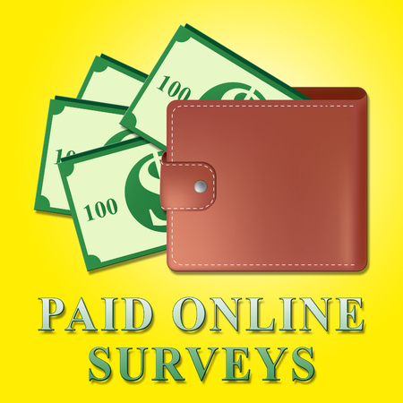 Paid Online Surveys Wallet Meaning Internet Survey 3d Illustration