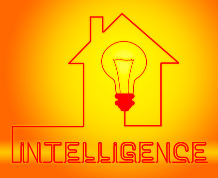smartness: Intelligence Light Representing Intellectual Capacity And Acumen