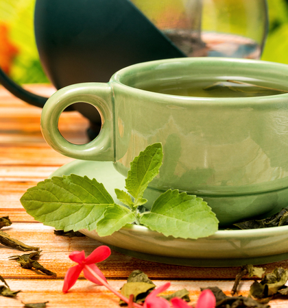 Tea With Mint Indicating Outside Herb And Refreshed