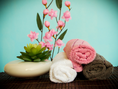 Beauty Day Spa Wellness Means Natural Relaxing Salon