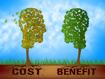 Cost Vs Benefit Heads Mean Comparing Price Against Value. Return On Investment Or Balancing Gain - 3d Illustration Stock Photo