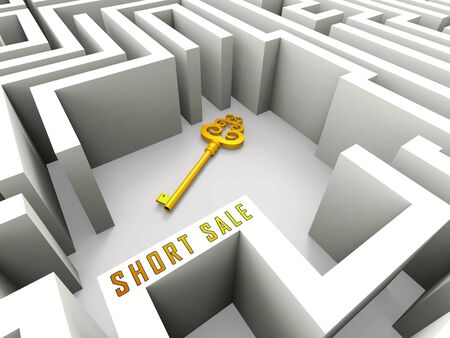 Short Sale House Or Real Estate Key Means Loss On Home Investment. Housing Money Losing Due To Economy Or Insolvency - 3d illustration