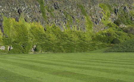 ヘザーの overgown である急な崖の表面の手入れの行き届いた芝生の風景ショット 写真素材 - 50220481