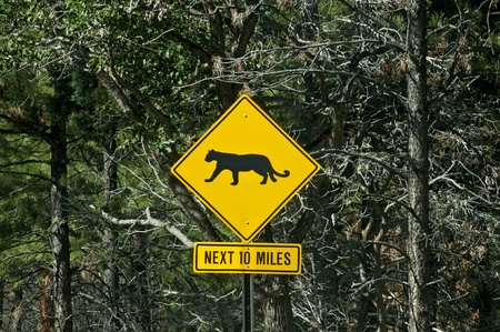 Sign warning of mountain lions near the Grand Canyon Reklamní fotografie