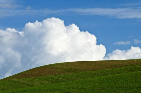 palouse: Rolling fields against a background of cumulus clouds and blue sky in the Palouse area of Washington state Stock Photo