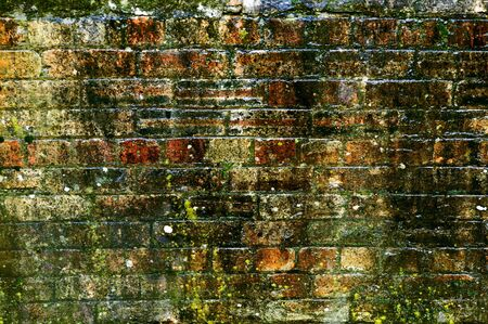 A grunge brick wall being used as a background. Stock Photo - 3835523