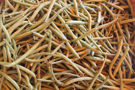 green beans: ejotes
