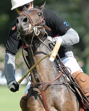 Focus on polo player in action - maillet in the foreground.