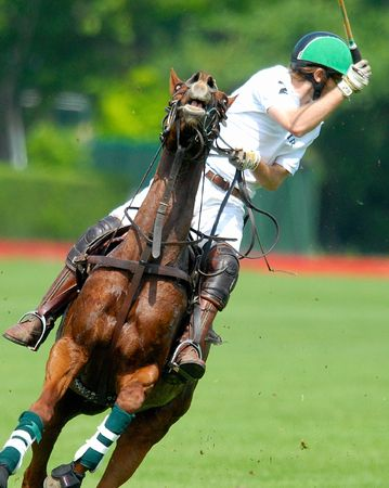 polo sport: polo player in action - green helmet