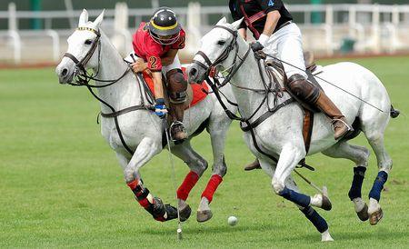polo: Actie polowedstrijd, 2 spelers. Stockfoto