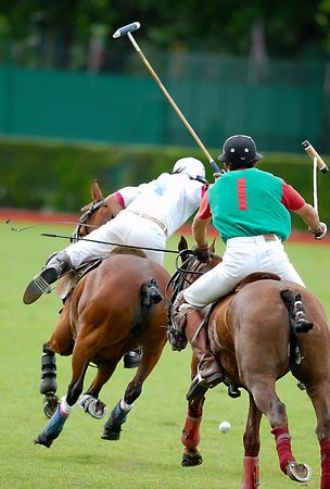 Polo action game, right towards the goal.