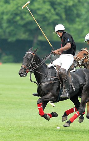 mallet: Polo action game, waiting stance. Stock Photo
